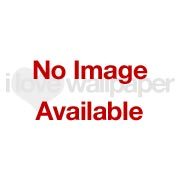 Henderson Interiors Camden Apex Glitter Wallpaper Rose Gold - Wallpaper from I Love Wallpaper UK