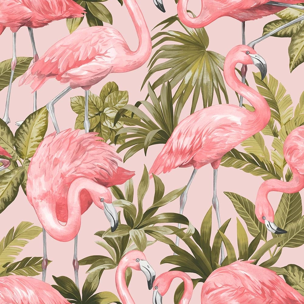 I Love Wallpaper Flamingo Wallpaper Blush Pink Ilw20006