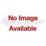 Gingko Leaf Wallpaper Navy Gold