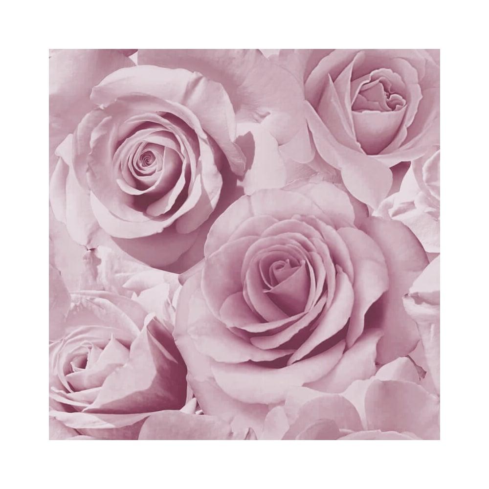 Madison Rose Wallpaper Purple Ilw023 Wallpaper From I