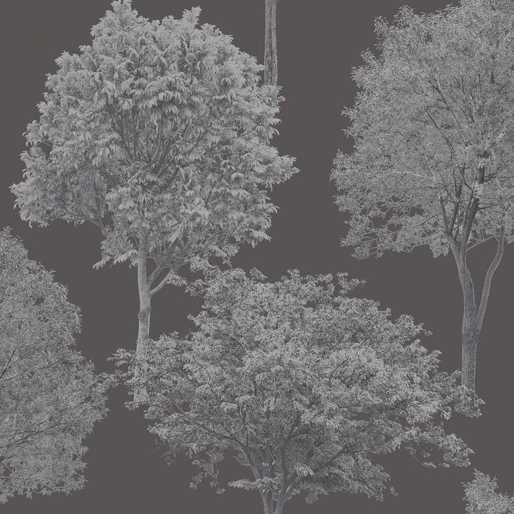 Fine Decor Woodland Trees Wallpaper Black Silver